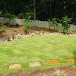 Residential Sod and Plantings -13 copy
