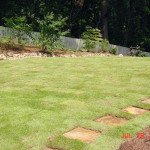 Residential Sod and Plantings -17 copy
