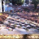 Patios, Walkways, Driveways - 01 copy