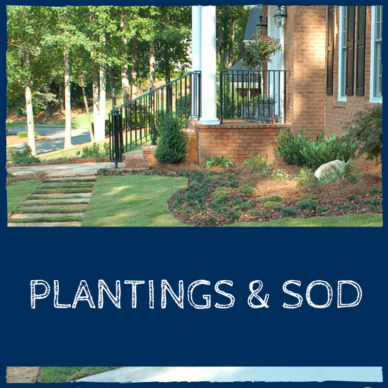 Plantings and Sod