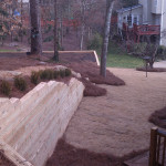 Retaining Walls and Steps - 01