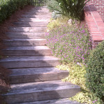 Retaining Walls and Steps - 03